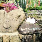 (ねこレポ)2017/05/13(神河町) グリーンエコー笠形で鯉のぼり&かんざきピノキオ館