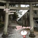 (ねこレポ)新年あけましておめでとうございます。 福崎町鈴ノ森神社