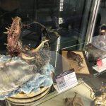 「第4回全国妖怪造形コンテスト」の入選作品が福崎町役場で公開中。 #福崎町
