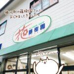 ぷち(ねこレポ)神崎総合病院すぐ近くの「フラワーショップ藤樹園」におじゃましてきました。
