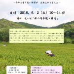 6月2日(土) 仙霊茶の新茶販売会 | 道の駅「銀の馬車道・神河」