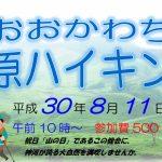 (開催終了)8月11日(土) おおかわち高原ハイキング