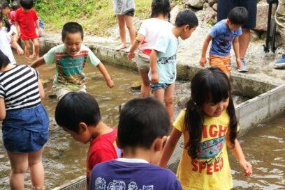 【市川町】夏を楽しむ「リフレッシュパーク市川」のBBQ&キャンプ情報