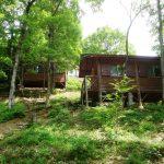 八千種自然活用村(春日キャンプ場)| キャンプ&BBQ
