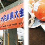 (開催されました)第1回 日本一どでカボチャ兵庫県大会
