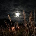 雲の隙間から月光。たいまつの灯りゆらめく。 | 砥峰高原観月会