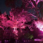 (開催終了)10月1日(月)かさがた温泉せせらぎの湯がピンクにライトアップ | ピンクリボン運動