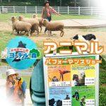 涼しくなってドッグショーも再開。アニマルイベント連日開催 | 神崎農村公園ヨーデルの森