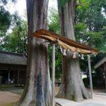 大年神社「夫婦杉」が兵庫県「景観形成重要建造物」と「景観形成重要樹木」に指定。| 神河町杉区