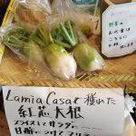 菜園の野菜が出来すぎて使いきれないので安価でお分けします | 薪窯ピッツァ ラ・ミア・カーサ