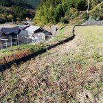 来年から1つ圃場が増えることになりました。| 田舎暮らし・カクレ畑