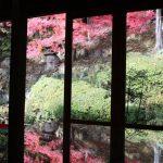 福崎町より紅葉だより | 應聖寺