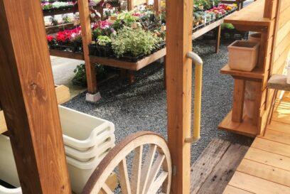 花を楽しみ、庭を楽しむ。Hana+(花プラス)| 花苗とガーデニング雑貨のショップ