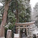 神河町では雪景色