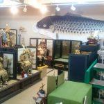 職人技が光る純金箔押の兜がひときわ華やか。五月人形・店舗展示販売中。|井上玩具店