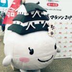 (開催終了)世界遺産姫路城マラソン2019|2月24日(日)9:00スタート