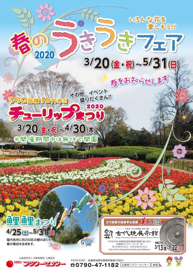 チューリップまつり2020|兵庫県立フラワーセンター