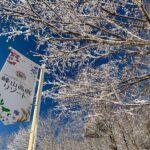 峰山高原リゾート ホワイトピーク 2019-2020|サードシーズン|神河町