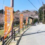 (開催終了)第13回民俗辻広場まつり|4月6日(土)
