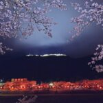【朝来市】竹田城跡|夜桜ライトアップは3月28日から