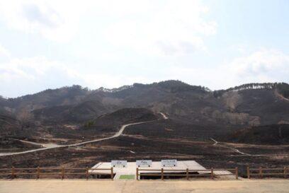 【神河町】2年ぶり。砥峰高原(とのみねこうげん)の山焼きが行われました。