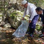 岡部川にあまごの稚魚約1500匹を放流|岡部川漁業協同組合