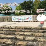 (ねこレポ)第2回 ロハスパーク姫路に行ってきた。