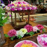 沙羅の寺として有名な應聖寺で花祭り|福崎町