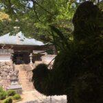 夏には夏の、秋には秋の。播州犬寺 金楽山法楽寺にぶらり。