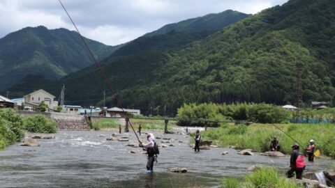 6月15日(土)越知川・猪篠川でのアユの友釣りが解禁に。|神河町