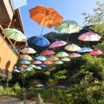 【神河町】桜と鯉のぼりとパラソル|グリーンエコー笠形