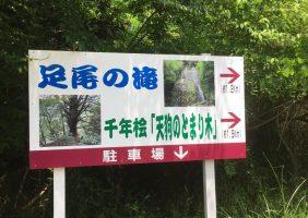 天狗の止まり木