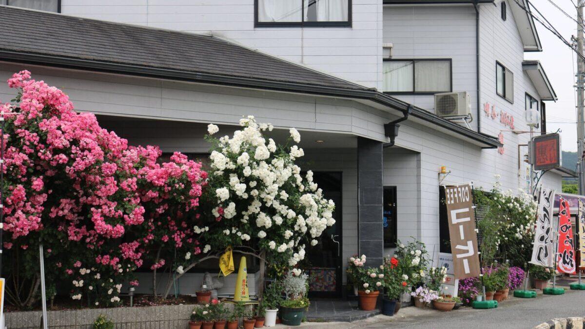 町の駅 喫茶 お好み焼き 惠(ei)