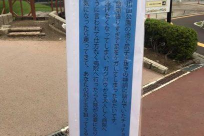 (福崎町)チョチョタ入院中 辻川山公園