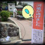 辻川山公園の河童が逃げました。