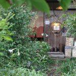 【市川町】町の駅「ぎゃらりーと体験の駅」でサツマイモ掘り体験が開催