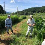 秋季農業体験を開催|笠形オーガニックファーマーズ
