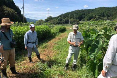 秋季農業体験を開催 笠形オーガニックファーマーズ