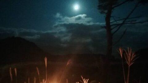 【砥峰高原観月会】見どころとアクセス|松明に照らされるススキと幻想的な月のあかり