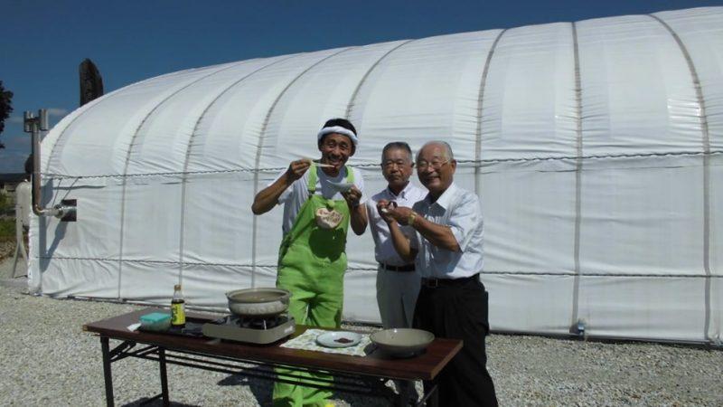 関西テレビ「よ~いドン!」で根日女グリーンファームが紹介されます。|加西市