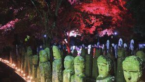 【五百羅漢】紅葉ライトアップ 羅漢寺 加西市
