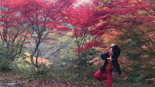 (開催されました)神河町|悠友山荘 第38回「雲の上の音楽祭」