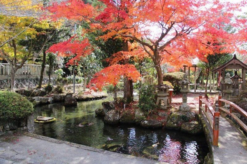 金比羅神社|中区鍛冶屋
