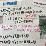 市川町町の駅|花と実りの駅で九条ねぎの収穫体験開始