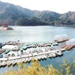 朝来市|冬季限定!生野銀山湖でワカサギ釣りが楽しめます。