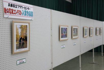 2019秋の写真コンテスト入賞作品展 兵庫県立フラワーセンター