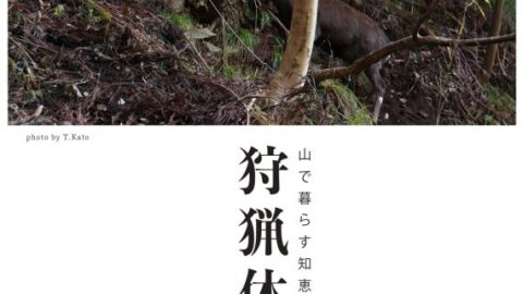 狩猟ガールとゆく!狩猟体験Ⅲ~わな猟・実践編~