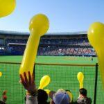 【姫路市】プロ野球オープン戦が無観客試合に|新型コロナウイルス