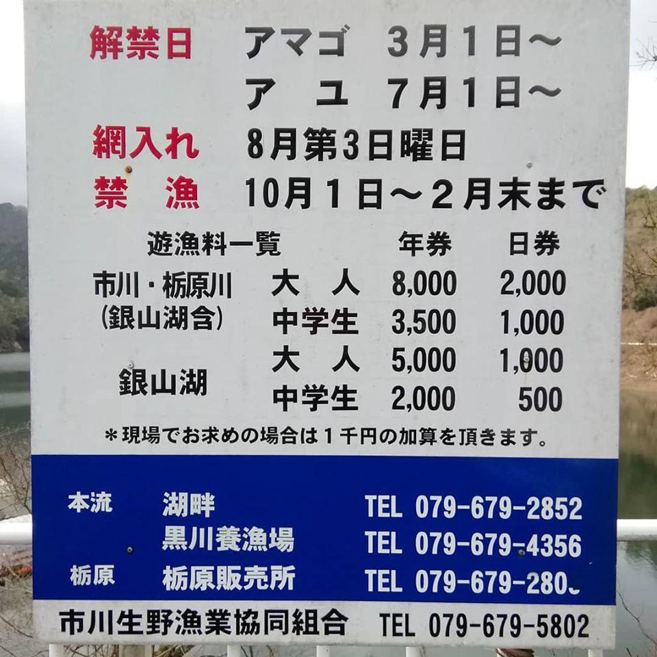 【朝来市】生野・黒川アマゴ釣り解禁