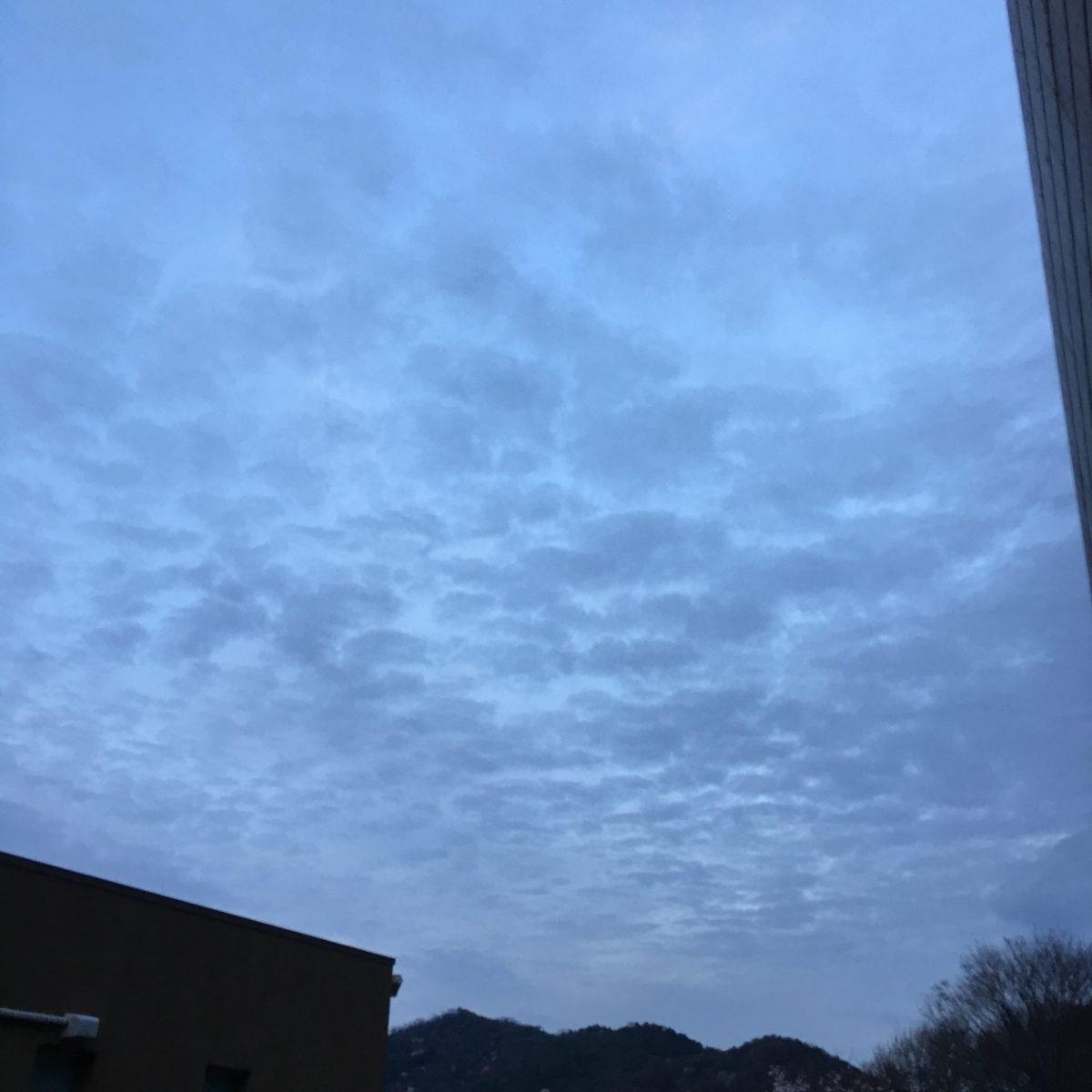 【福崎町】季節はずれな「うろこ雲」?それとも「ひつじ雲」?